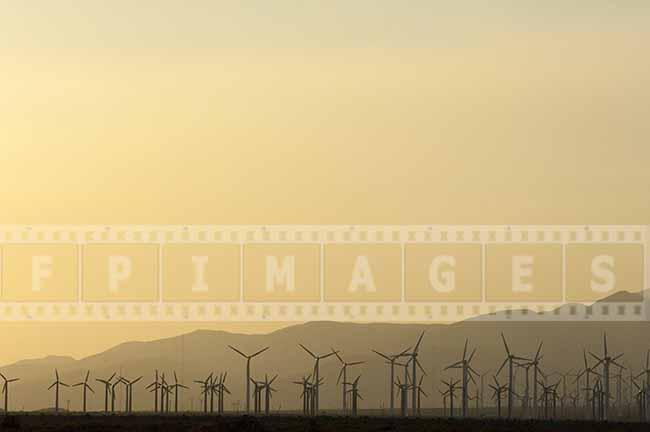 Large Industrial Wind Farm and Golden California sunset
