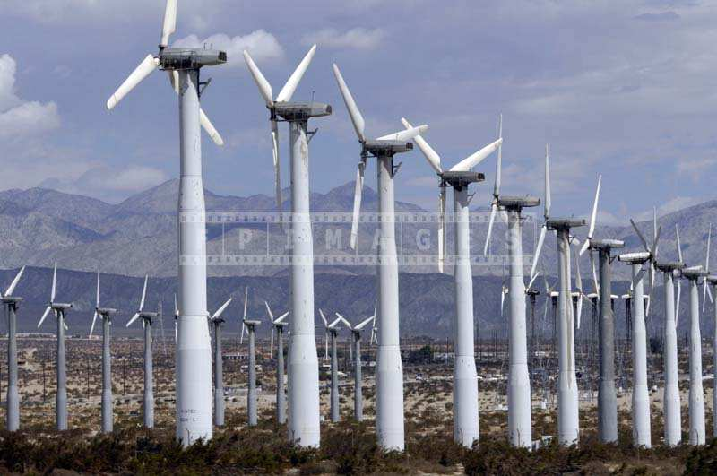 Wind Turbines rows