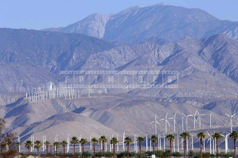 Wind Farm in California generates green energy