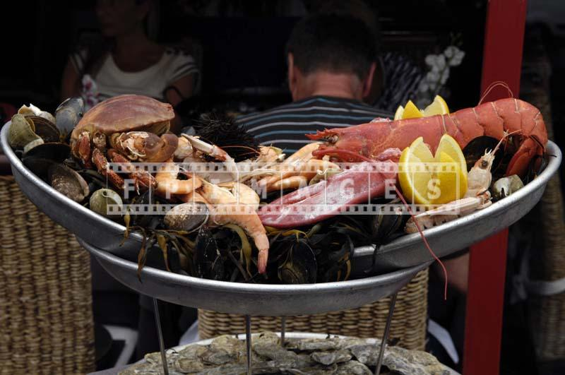 Restaurant display offering various shellfish - fruits de mer