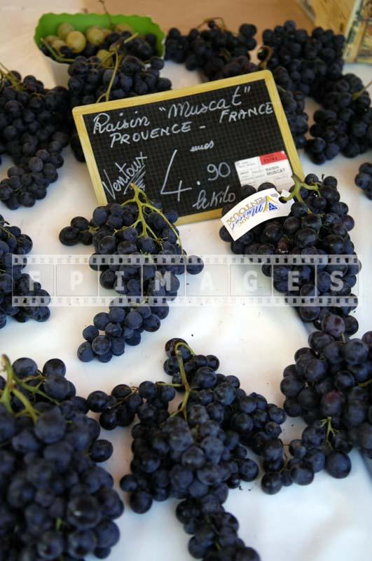 Muscat grapes clusters - Provence, France