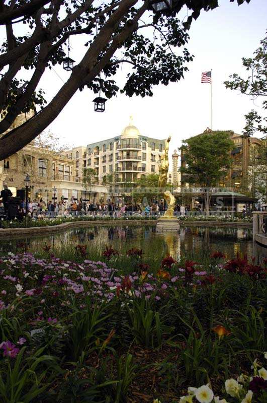 Vibrant Flowers and Greenery near the Americana at Brand Glendale