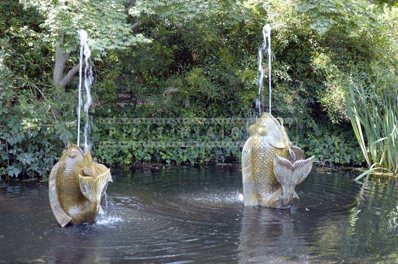 Fish-shaped water fountains