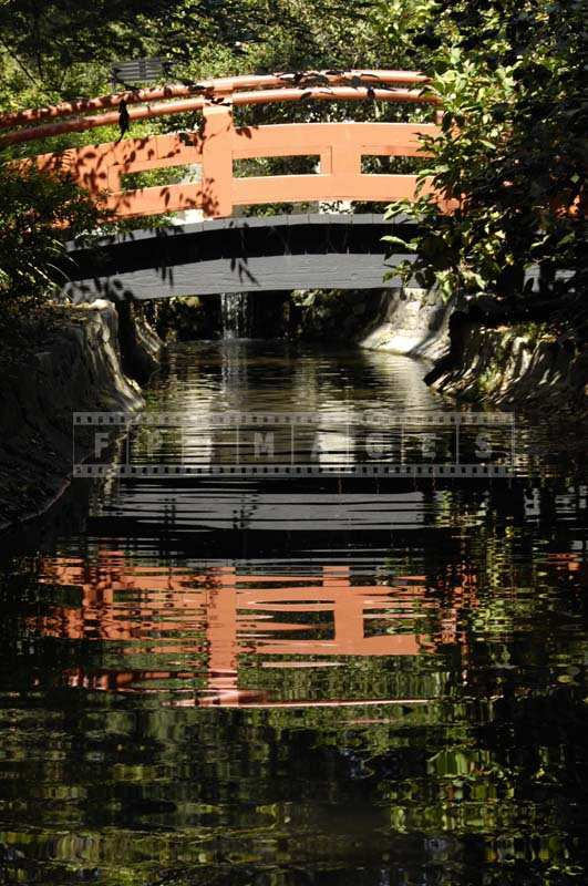 Reflection of a Japanese Bridge