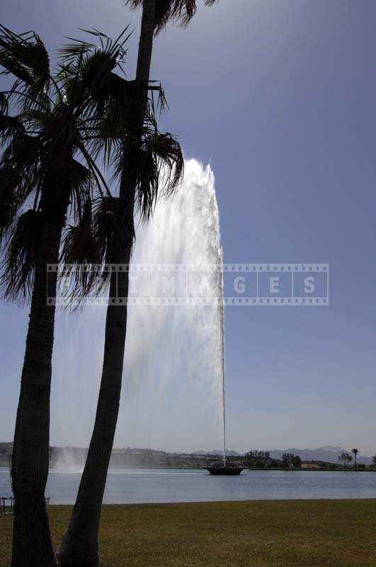 The Spray of Water from the Fountain behind the Palm Trees