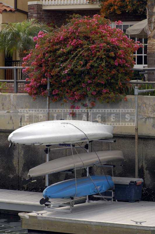 Kayaks arranged neatly under bougainvillea bush