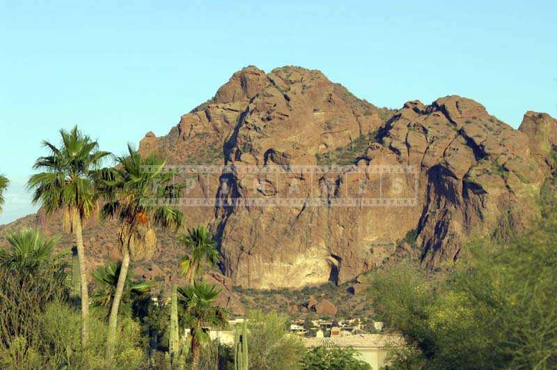 The Camelback Mountain surrounded by green residential area