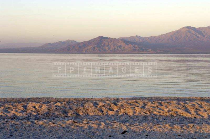 quiete early morning at Salton sea beach