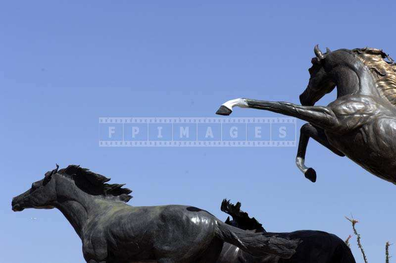Prancing Bronze Horses