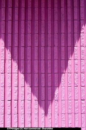Pink Wall Texture, free image