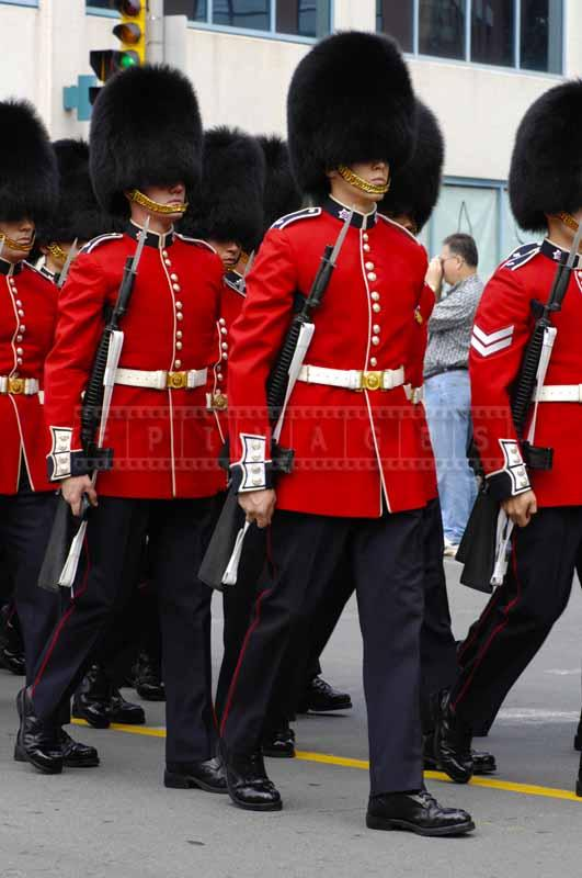 Military with guns and bearskin hats at the parade