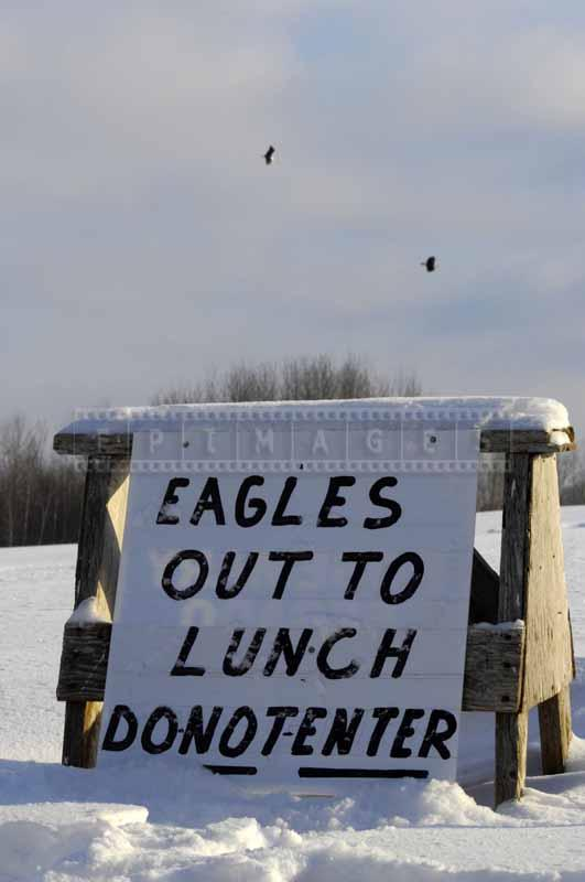Sign at the eagle feeding field