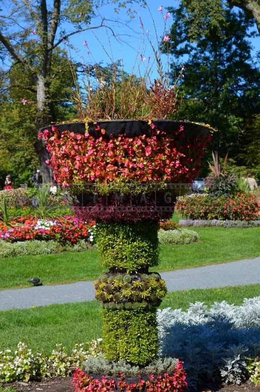Plants covered tall urn