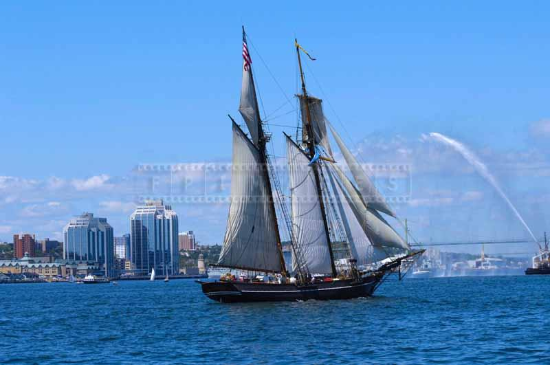 Schooner Amistad at the Parade, sailing photos