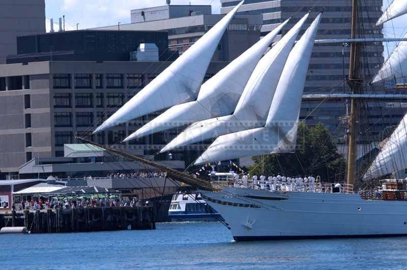 Barque Cisne Branco crew salutes spectators, sailing photos