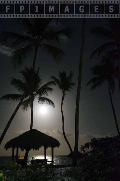 caribbean night landscape with full moon