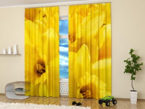 Yellow colors of pictures flowers used in home decor