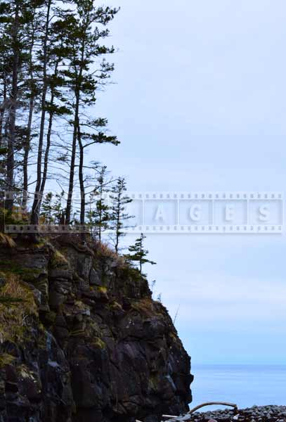 Bay of Fundy Bohaker Cove, nature pictures