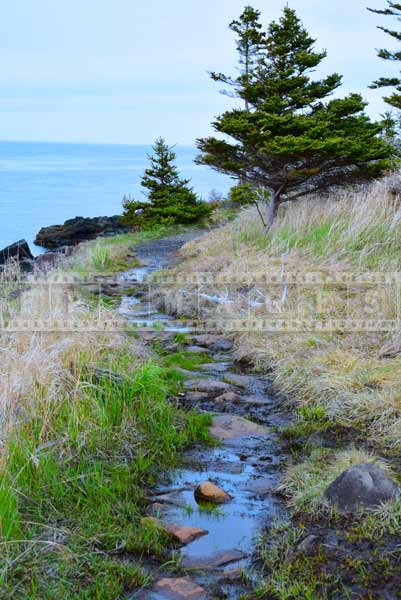 Scenic hiking trail, landscape photography for travel images