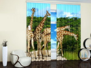 Pictures of animals decorate walls