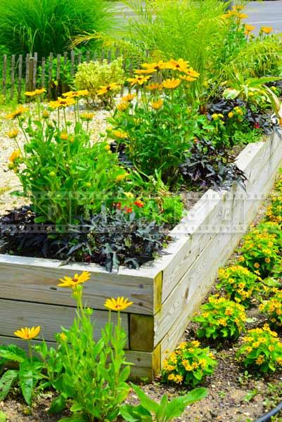 Flower garden by Master Gardeners