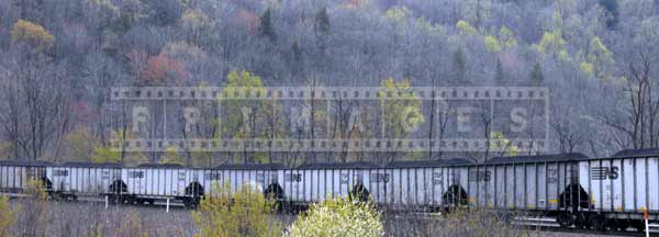 Freight train with coal and surrounding nature in the spring, industrial images