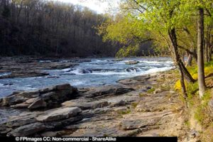 banks of Youghiogheny River near Ohiopyle, spring images