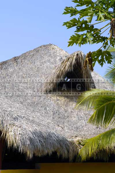 palapa building thatched roof dominican republic travel images