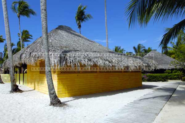 Beach pictures with thatched roof huts