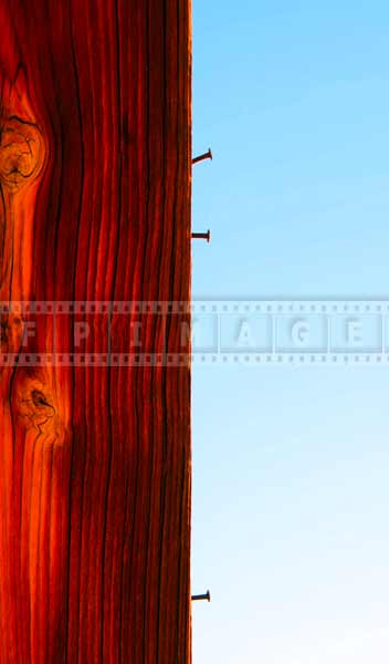Bright wood texture and three nails, abstract images