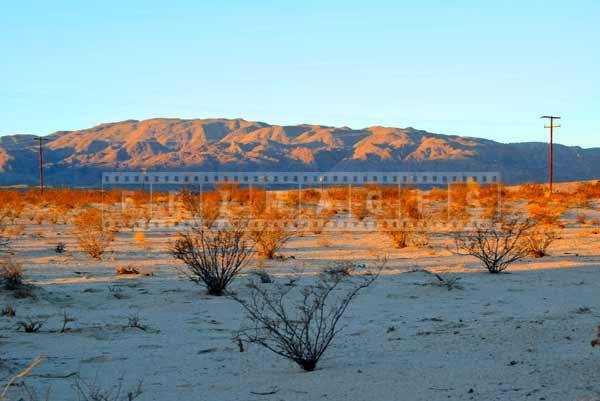 Mojave desert sunrise near Twentynine Palms, travel images