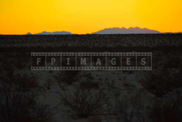 sunrise in Mojave desert, nature landscape photography