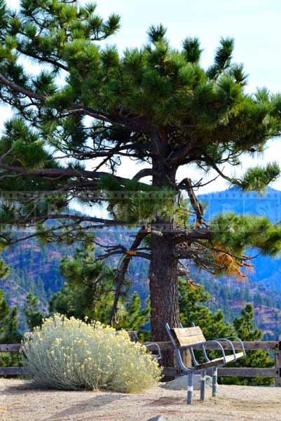 Scenic drive stop - Inspiration point