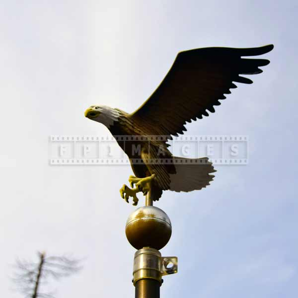 Bronze eagle at the Ranch