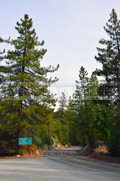Road sign with distances to Buckhorn, Big Pines, Wrightwood