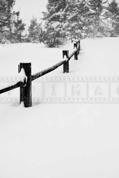 Scenic winter picture of a snow covered fence