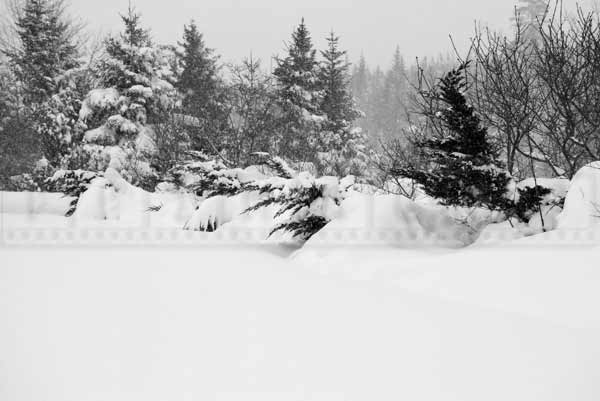 nova scotia winter storm march 18, 2015