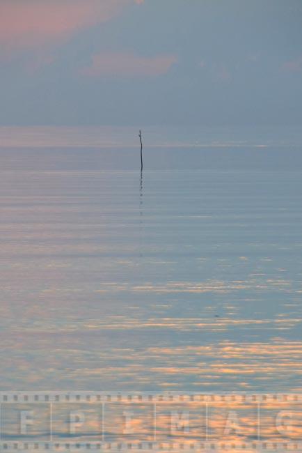 Calm ocean, sunrise oceanscape