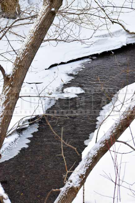 Winter nature picture - water flow in small brook