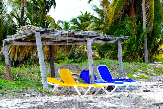 Beach chairs under palapa