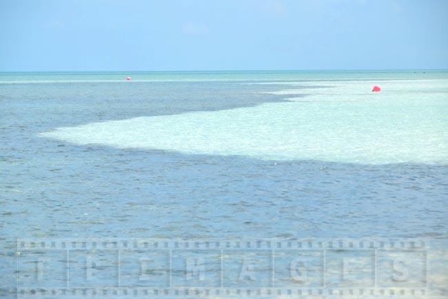 Scenic Caribbean beach picture