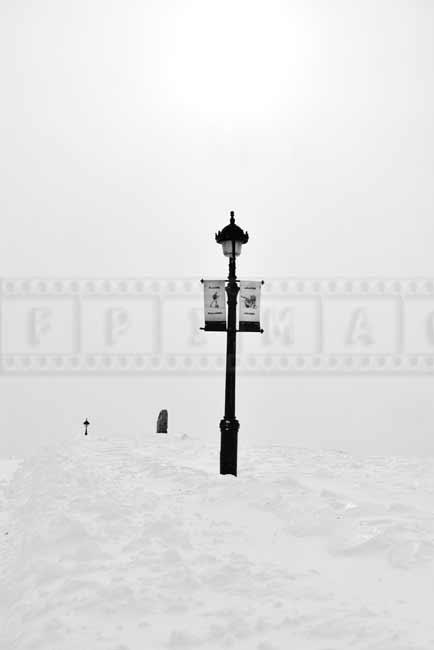urban park landscape photo and  winter sun
