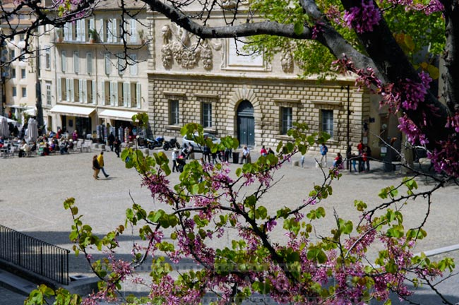Spring in Avignon, small town in Europe
