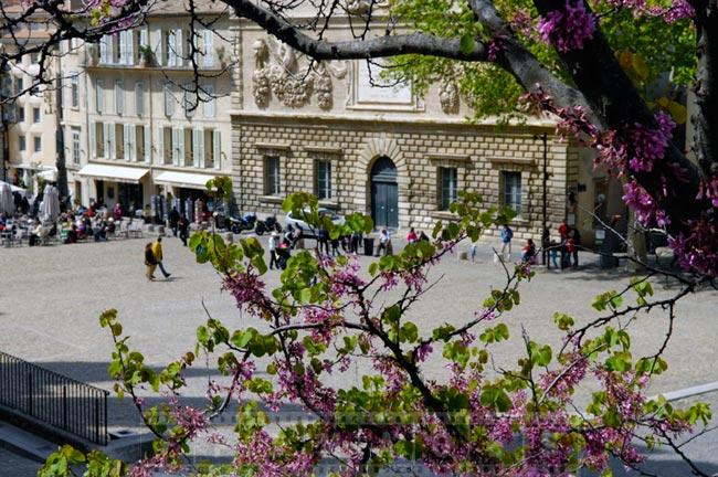 Spring in Avignon, small town in Europe