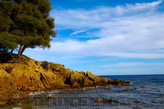 Rugged shores of Saint Tropez bay