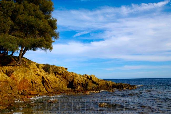 Rugged shores of Saint Tropez bay