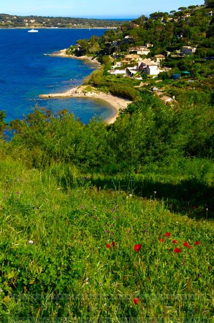 Beautiful Saint Tropez shores and beaches