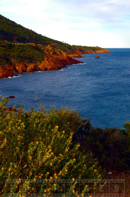 Med sea and rugged shores near Saint Tropez
