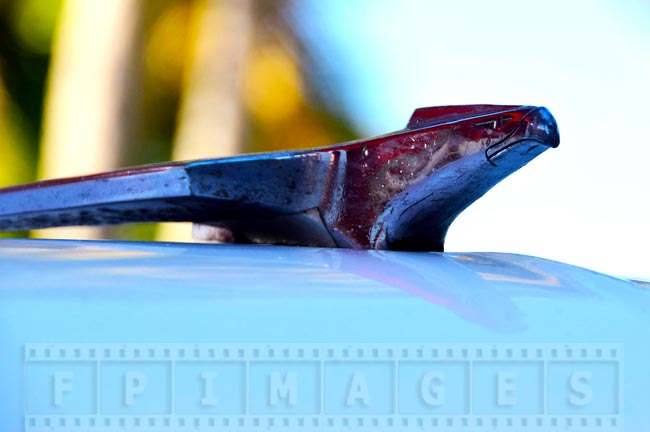 Old car front badge - chrome eagle