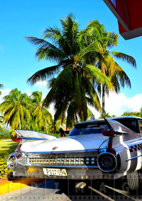 Old Cadillac Eldorado in a beautiful tropical setting